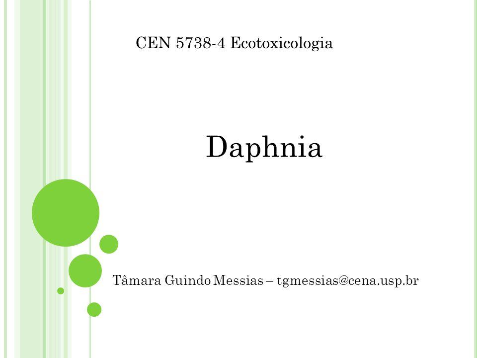 Daphnia Tâmara Guindo Messias – tgmessias@cena.usp.br CEN 5738-4 Ecotoxicologia