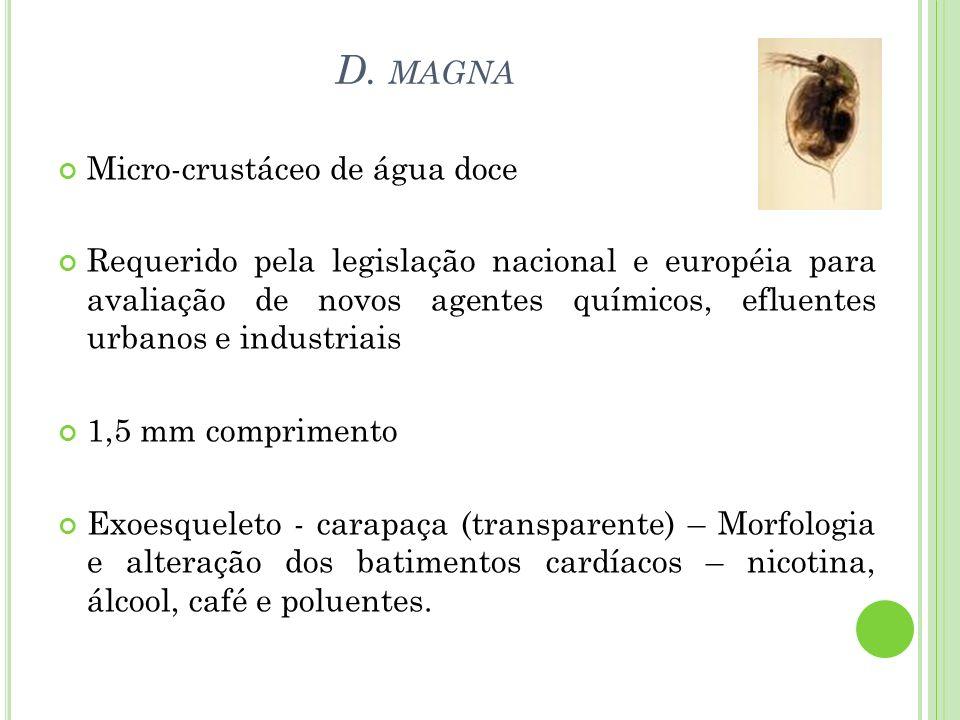D. MAGNA Micro-crustáceo de água doce Requerido pela legislação nacional e européia para avaliação de novos agentes químicos, efluentes urbanos e indu