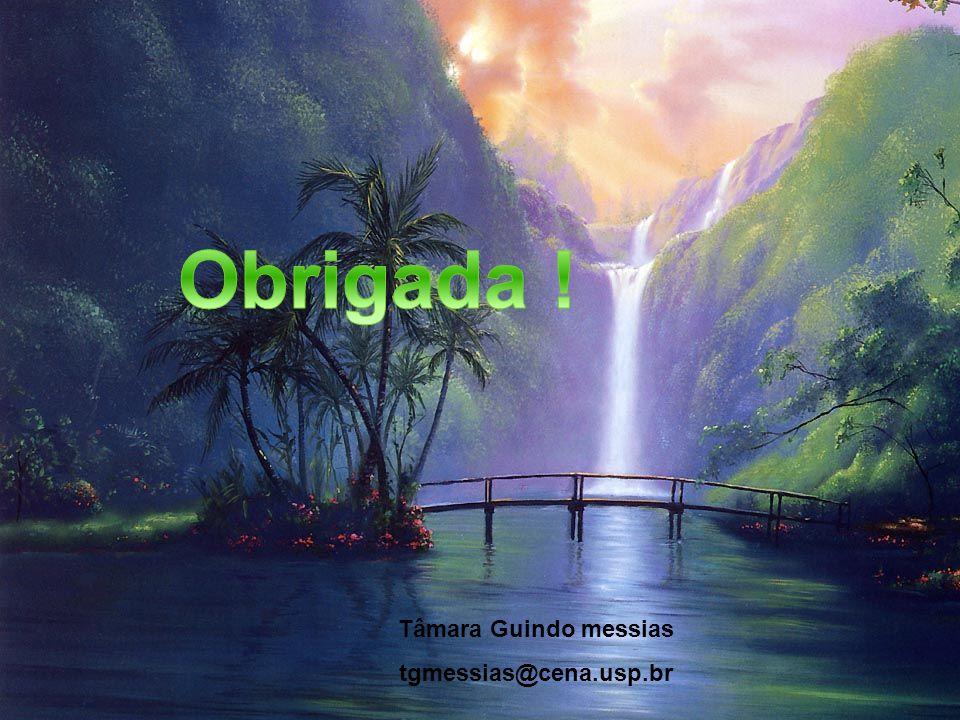 Tâmara Guindo messias tgmessias@cena.usp.br