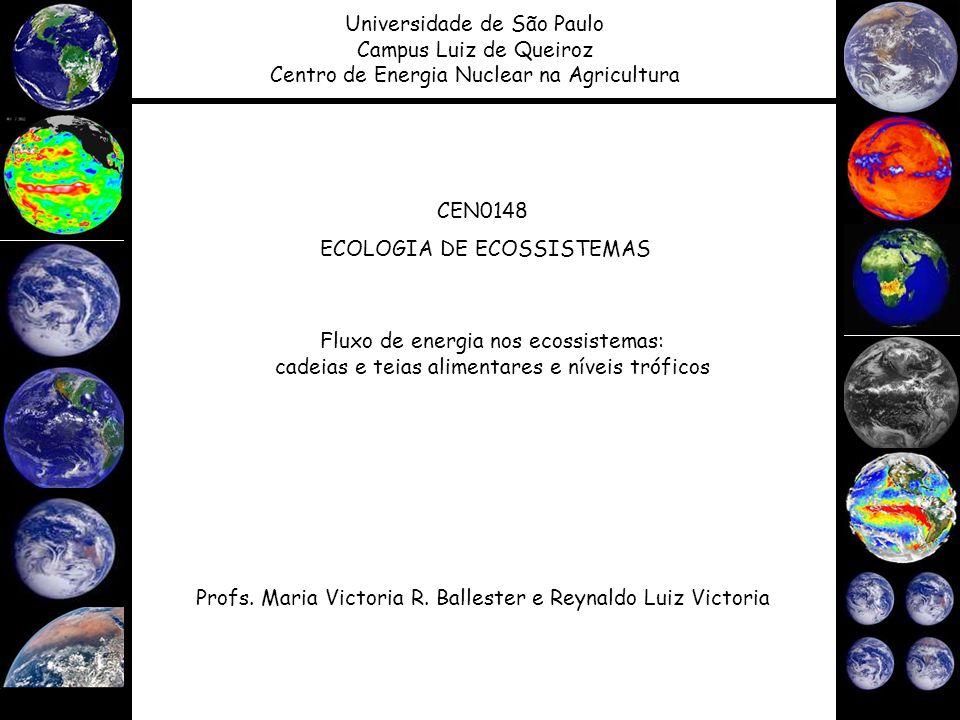 CEN0148 ECOLOGIA DE ECOSSISTEMAS Profs. Maria Victoria R. Ballester e Reynaldo Luiz Victoria Universidade de São Paulo Campus Luiz de Queiroz Centro d
