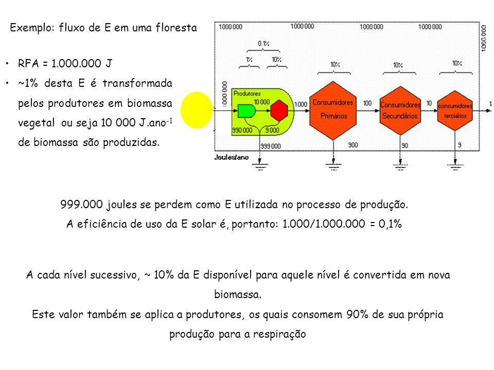 999.000 joules se perdem como E utilizada no processo de produção. A eficiência de uso da E solar é, portanto: 1.000/1.000.000 = 0,1% Exemplo: fluxo d