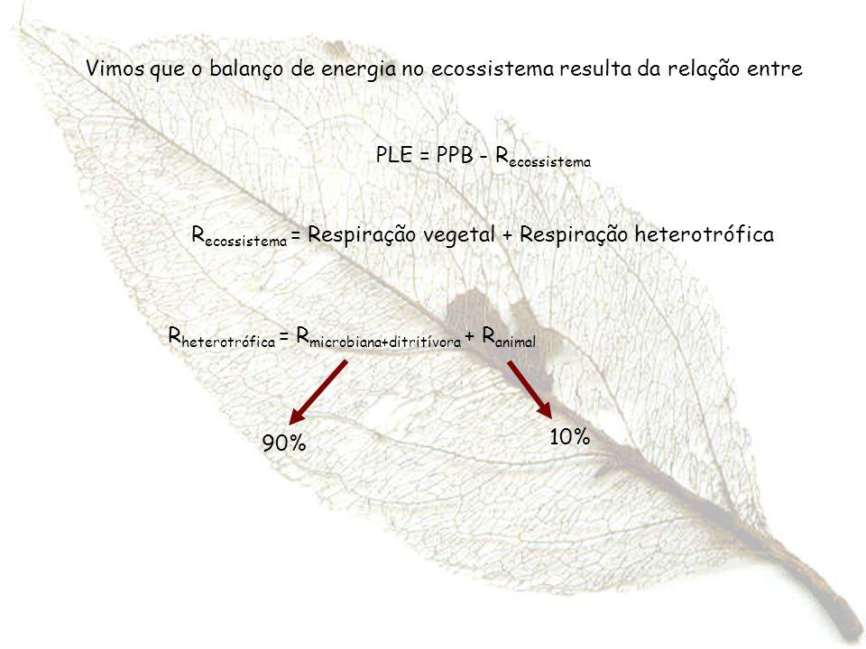R ecossistema = Respiração vegetal + Respiração heterotrófica Vimos que o balanço de energia no ecossistema resulta da relação entre PLE = PPB - R eco
