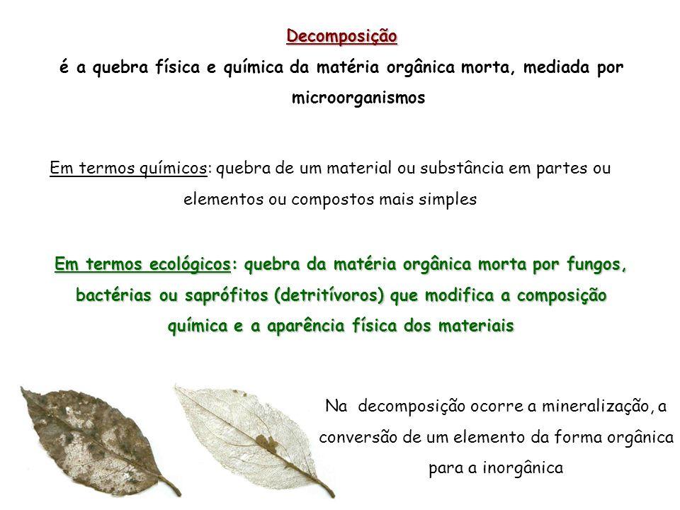 Decomposição é a quebra física e química da matéria orgânica morta, mediada por microorganismos Em termos químicos: quebra de um material ou substânci