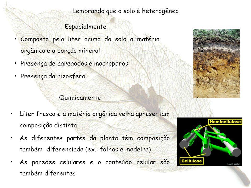 Lembrando que o solo é heterogêneo Composto pelo liter acima do solo a matéria orgânica e a porção mineral Presença de agregados e macroporos Presença