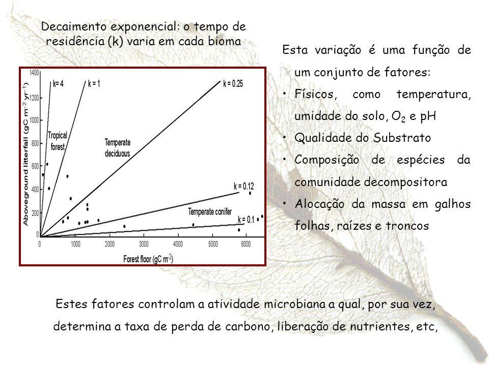 Decaimento exponencial: o tempo de residência (k) varia em cada bioma Esta variação é uma função de um conjunto de fatores: Físicos, como temperatura,