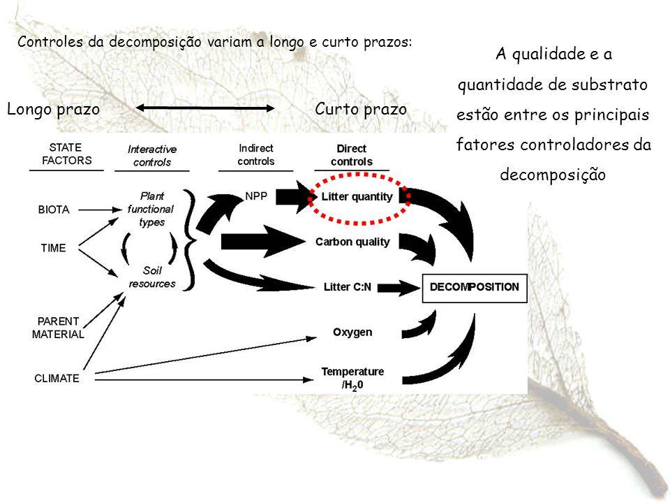 Controles da decomposição variam a longo e curto prazos: Longo prazo Curto prazo A qualidade e a quantidade de substrato estão entre os principais fat