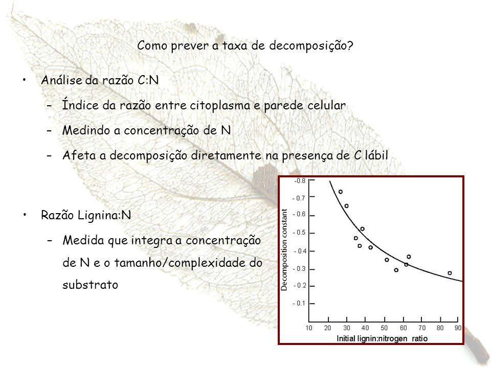 Como prever a taxa de decomposição? Análise da razão C:N –Índice da razão entre citoplasma e parede celular –Medindo a concentração de N –Afeta a deco