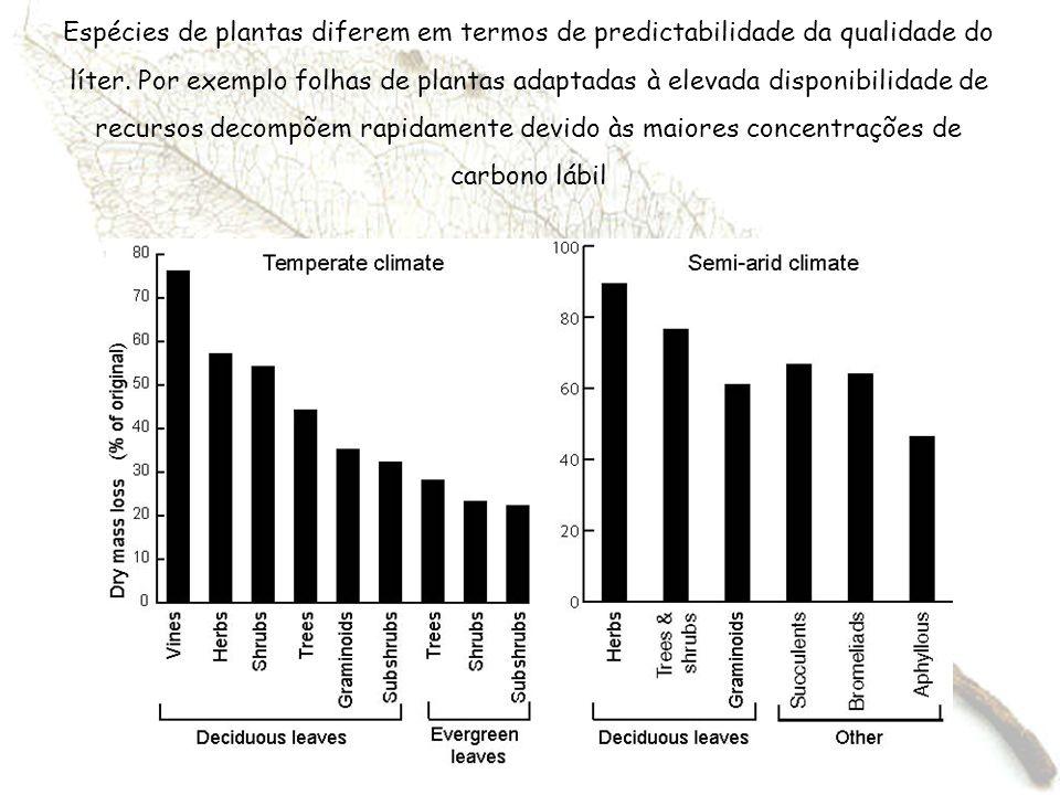 Espécies de plantas diferem em termos de predictabilidade da qualidade do líter. Por exemplo folhas de plantas adaptadas à elevada disponibilidade de