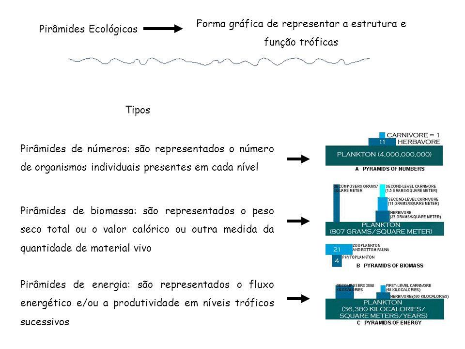 Forma gráfica de representar a estrutura e função tróficas Pirâmides Ecológicas Tipos Pirâmides de biomassa: são representados o peso seco total ou o