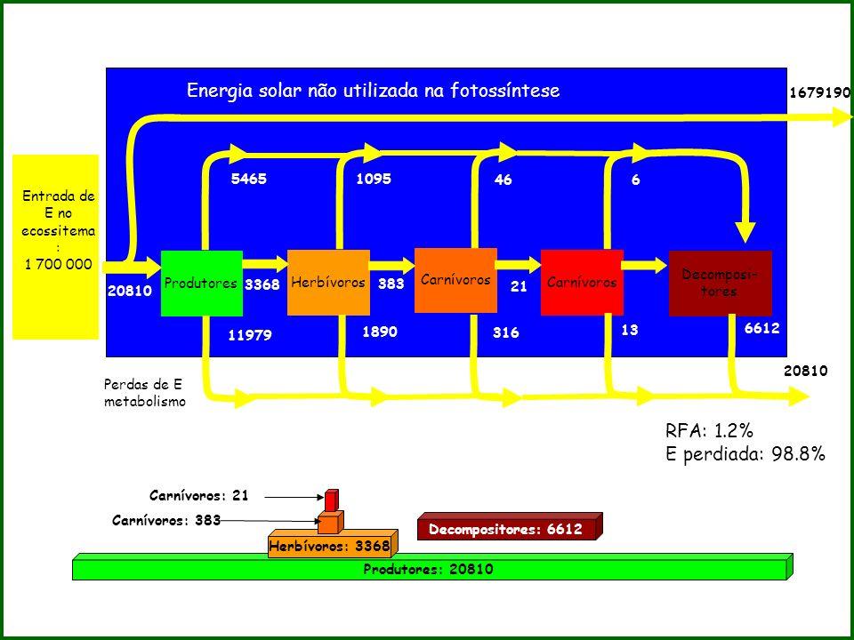 Produtores Herbívoros Carnívoros Decomposi- tores Entrada de E no ecossitema : 1 700 000 Energia solar não utilizada na fotossíntese 20810 3368 383 21
