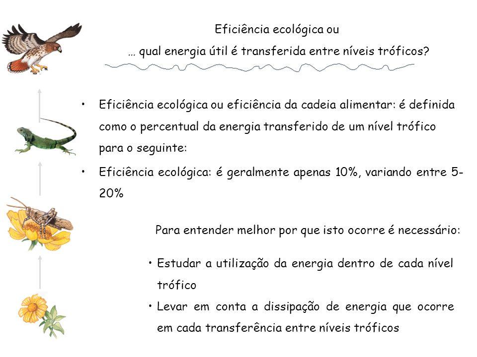 Eficiência ecológica ou … qual energia útil é transferida entre níveis tróficos? Eficiência ecológica ou eficiência da cadeia alimentar: é definida co