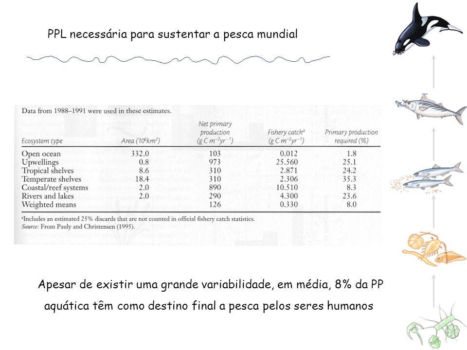 Apesar de existir uma grande variabilidade, em média, 8% da PP aquática têm como destino final a pesca pelos seres humanos PPL necessária para sustent