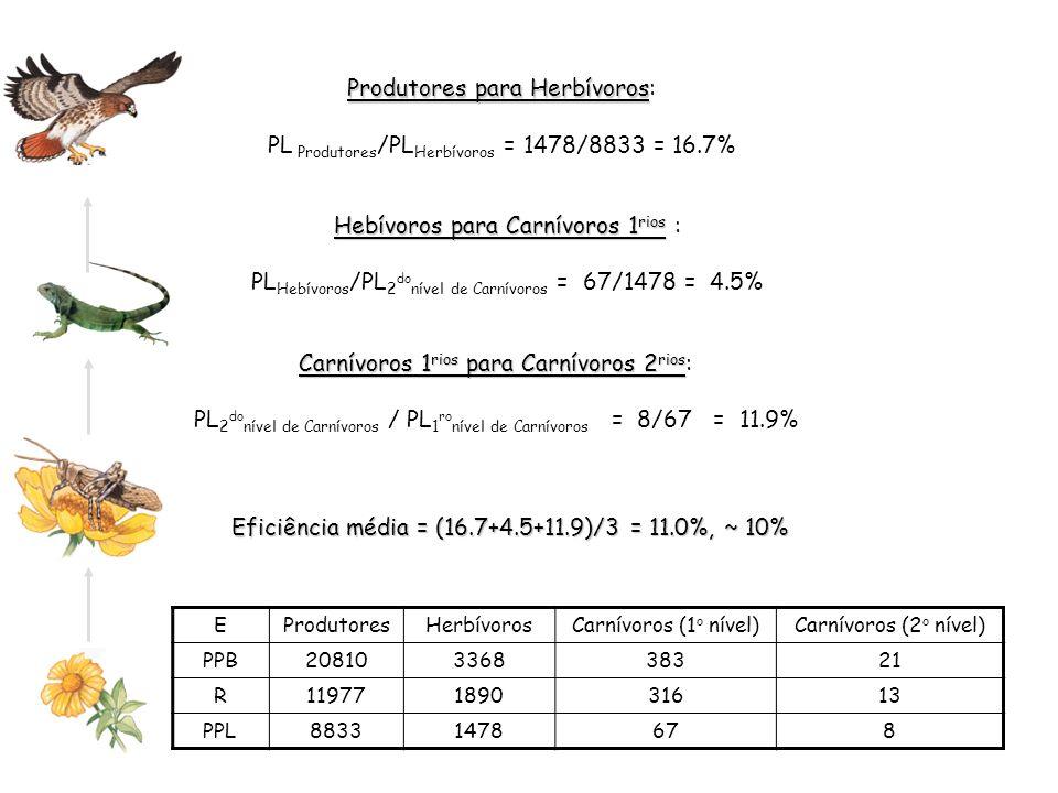 Produtores para Herbívoros Produtores para Herbívoros: PL Produtores /PL Herbívoros = 1478/8833 = 16.7% EProdutoresHerbívorosCarnívoros (1 o nível)Car
