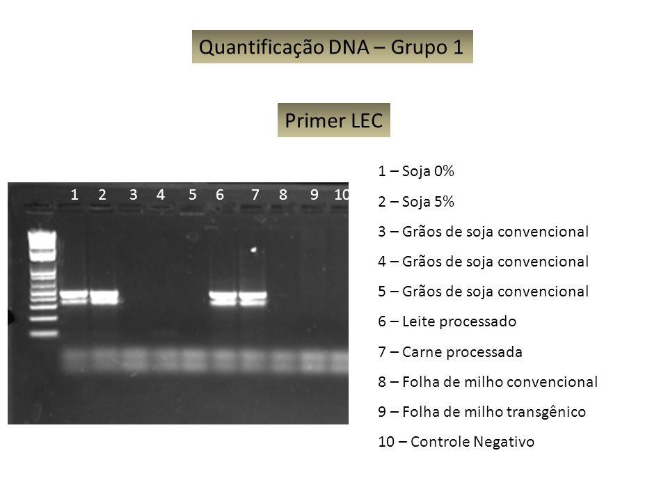Quantificação DNA – Grupo 1 1 – Soja 0% 2 – Soja 5% 3 – Grãos de soja convencional 4 – Grãos de soja convencional 5 – Grãos de soja convencional 6 – L