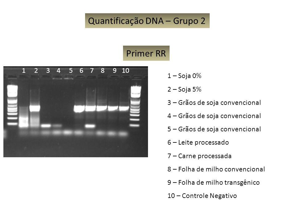 Quantificação DNA – Grupo 2 1 – Soja 0% 2 – Soja 5% 3 – Grãos de soja convencional 4 – Grãos de soja convencional 5 – Grãos de soja convencional 6 – L