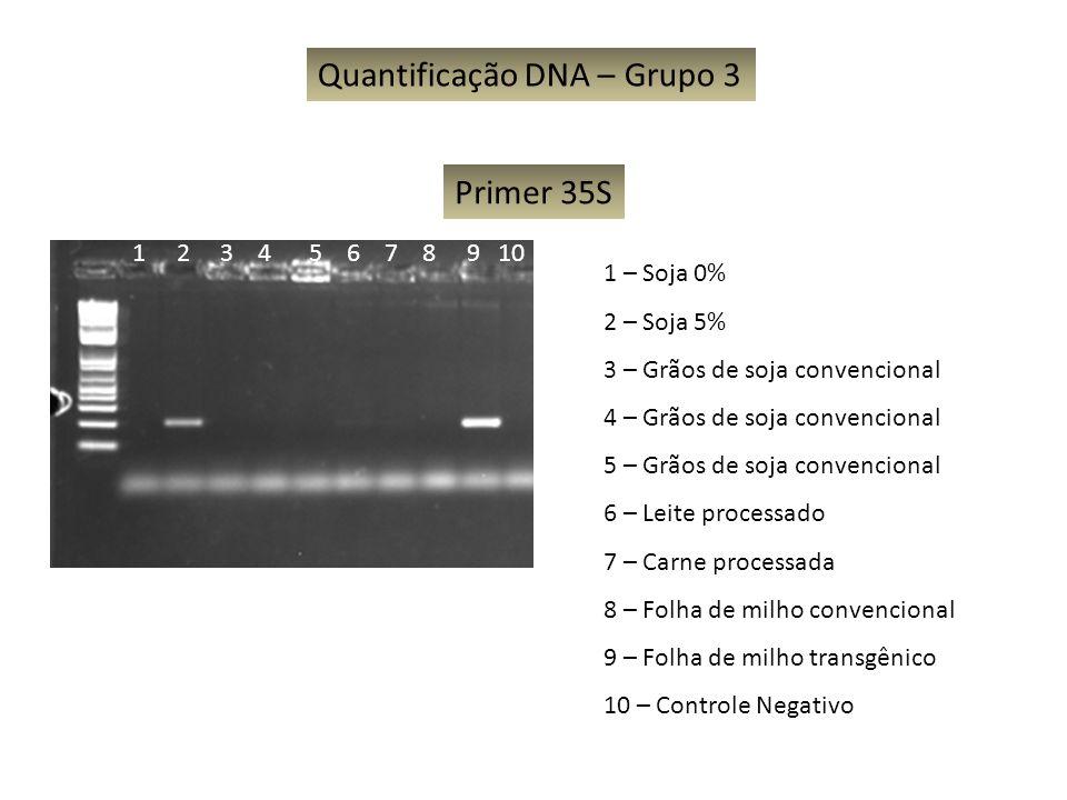 Quantificação DNA – Grupo 3 1 – Soja 0% 2 – Soja 5% 3 – Grãos de soja convencional 4 – Grãos de soja convencional 5 – Grãos de soja convencional 6 – L