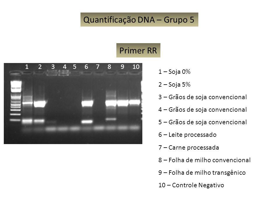 Quantificação DNA – Grupo 5 1 – Soja 0% 2 – Soja 5% 3 – Grãos de soja convencional 4 – Grãos de soja convencional 5 – Grãos de soja convencional 6 – L