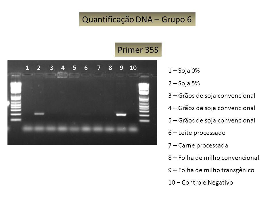 Quantificação DNA – Grupo 6 1 – Soja 0% 2 – Soja 5% 3 – Grãos de soja convencional 4 – Grãos de soja convencional 5 – Grãos de soja convencional 6 – L