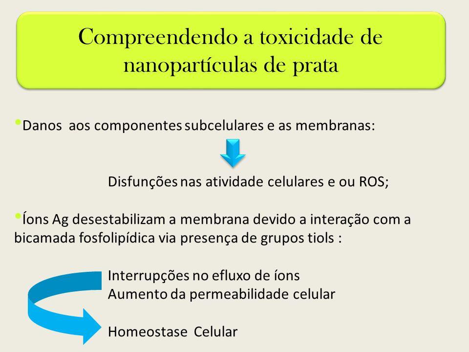 Danos aos componentes subcelulares e as membranas: Disfunções nas atividade celulares e ou ROS; Íons Ag desestabilizam a membrana devido a interação c