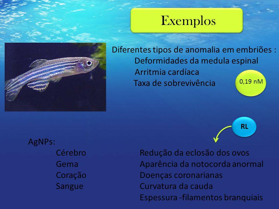 Diferentes tipos de anomalia em embriões : Deformidades da medula espinal Arritmia cardíaca Taxa de sobrevivência AgNPs: CérebroRedução da eclosão dos
