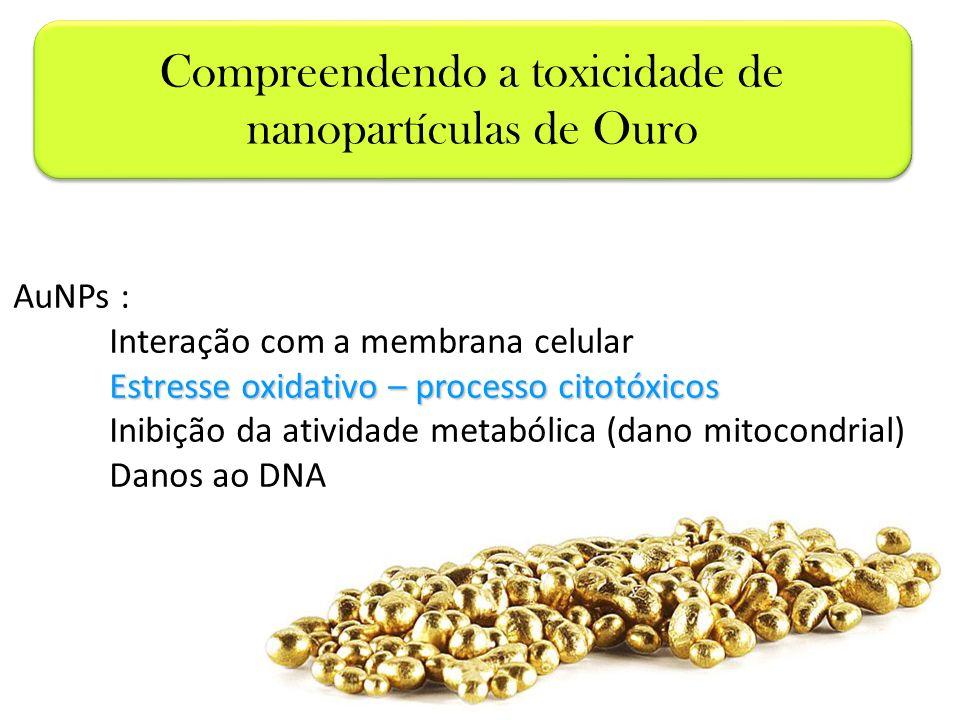 AuNPs : Interação com a membrana celular Estresse oxidativo – processo citotóxicos Inibição da atividade metabólica (dano mitocondrial) Danos ao DNA C