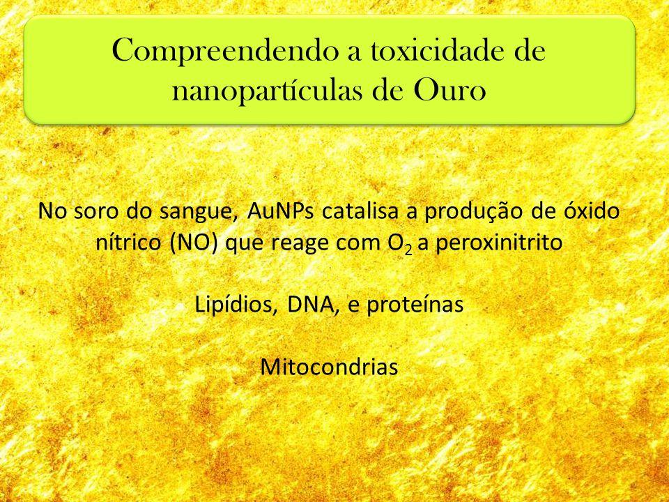 No soro do sangue, AuNPs catalisa a produção de óxido nítrico (NO) que reage com O 2 a peroxinitrito Lipídios, DNA, e proteínas Mitocondrias Compreend