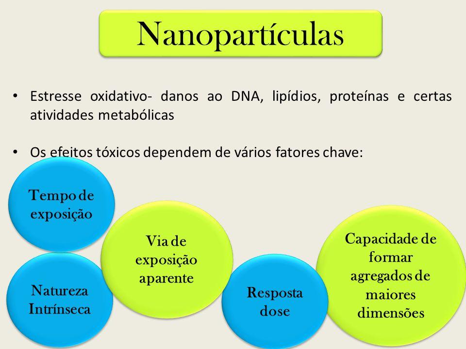 Estresse oxidativo- danos ao DNA, lipídios, proteínas e certas atividades metabólicas Os efeitos tóxicos dependem de vários fatores chave: Nanopartícu