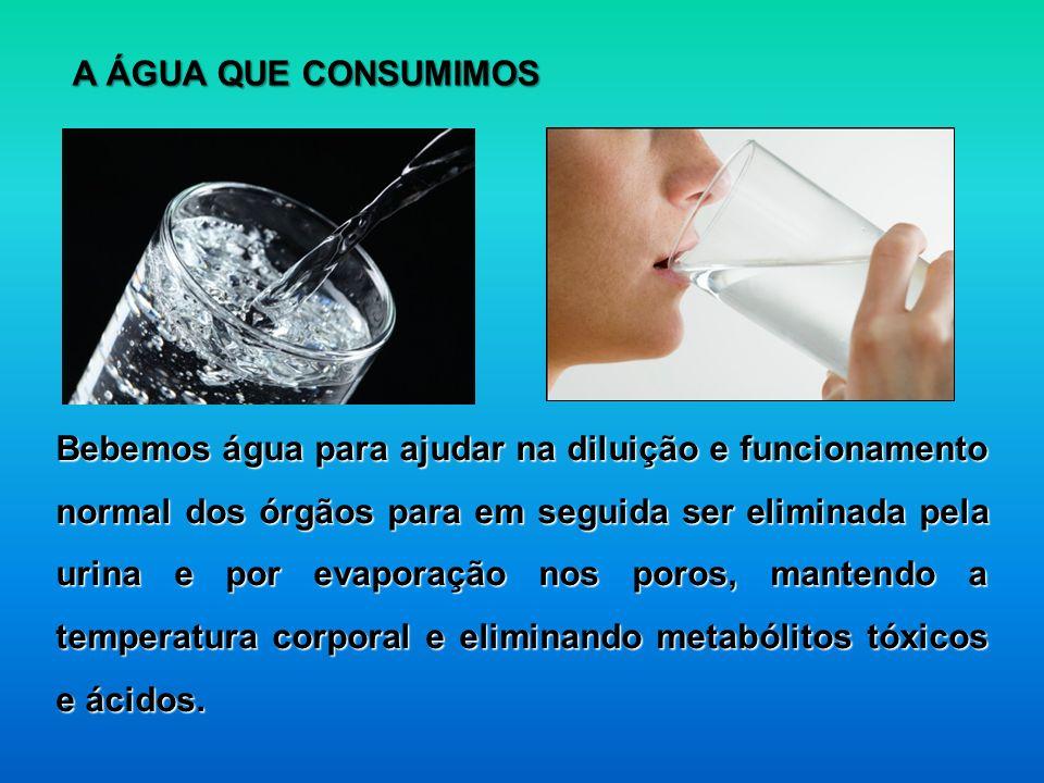 Bebemos água para ajudar na diluição e funcionamento normal dos órgãos para em seguida ser eliminada pela urina e por evaporação nos poros, mantendo a