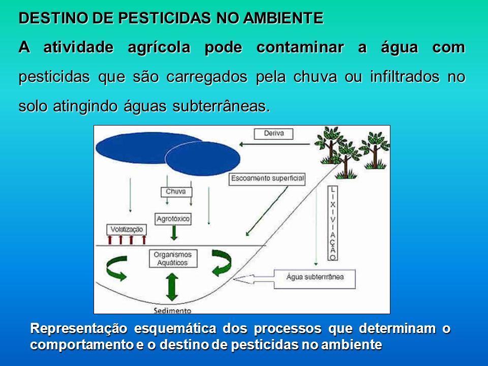 DESTINO DE PESTICIDAS NO AMBIENTE A atividade agrícola pode contaminar a água com pesticidas que são carregados pela chuva ou infiltrados no solo atin