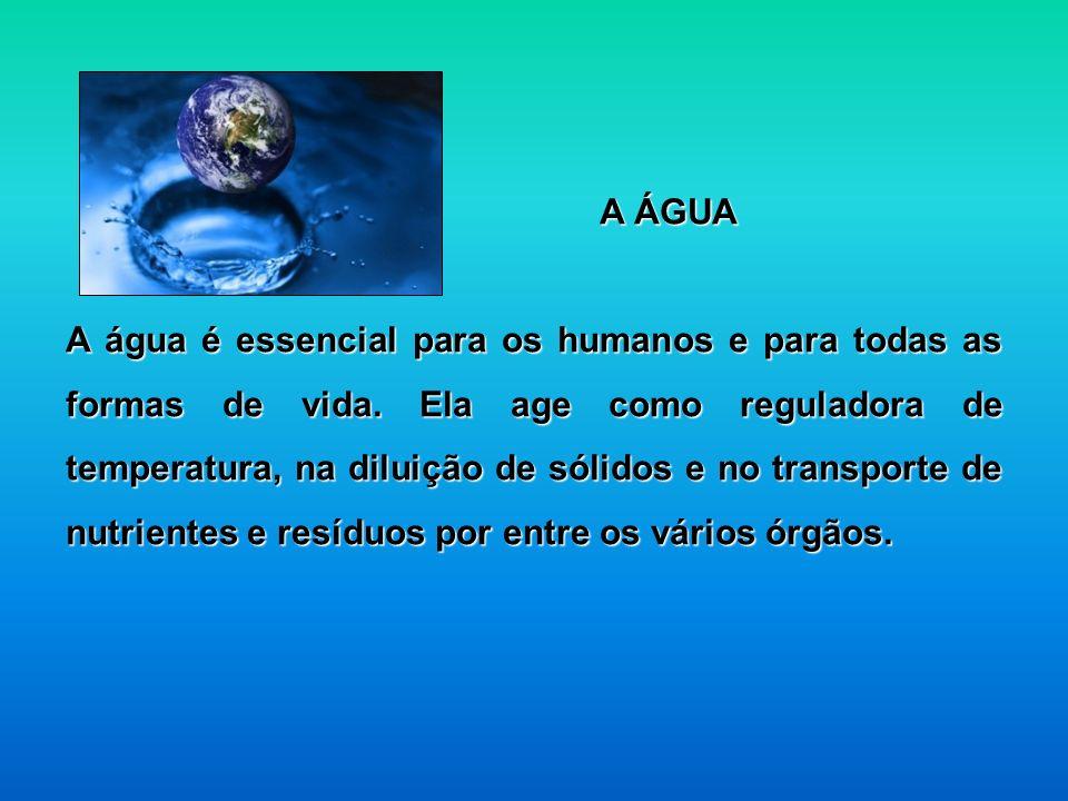 A ÁGUA A água é essencial para os humanos e para todas as formas de vida. Ela age como reguladora de temperatura, na diluição de sólidos e no transpor