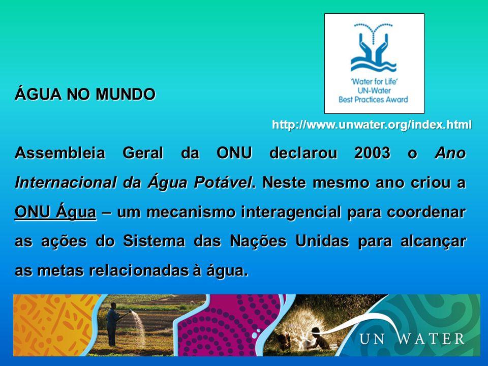 ÁGUA NO MUNDO Assembleia Geral da ONU declarou 2003 o Ano Internacional da Água Potável. Neste mesmo ano criou a ONU Água – um mecanismo interagencial
