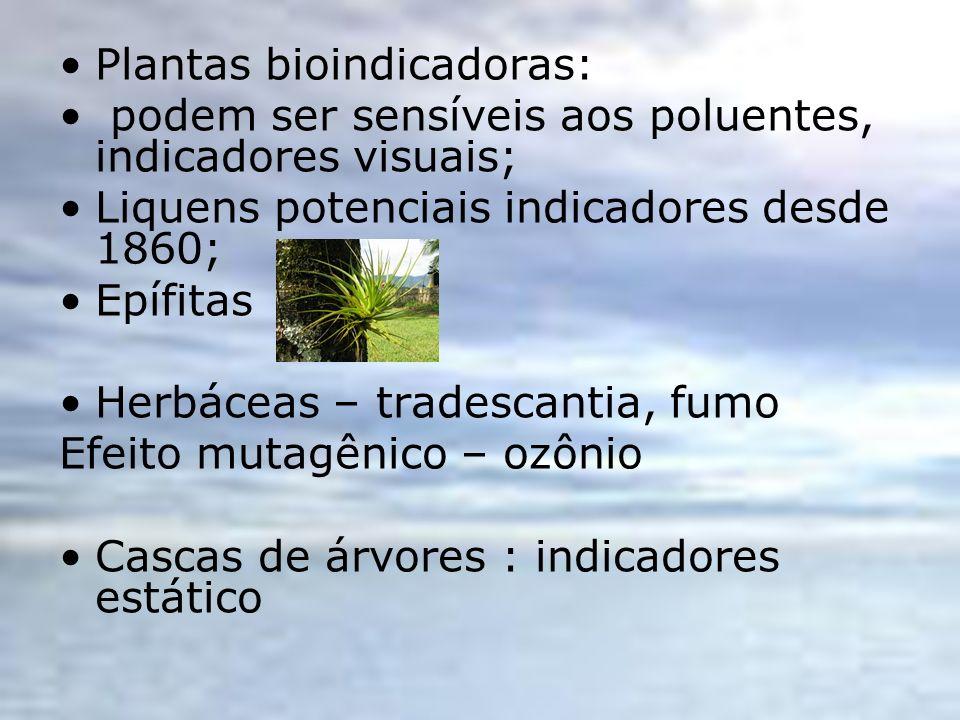 Plantas bioindicadoras: podem ser sensíveis aos poluentes, indicadores visuais; Liquens potenciais indicadores desde 1860; Epífitas Herbáceas – trades