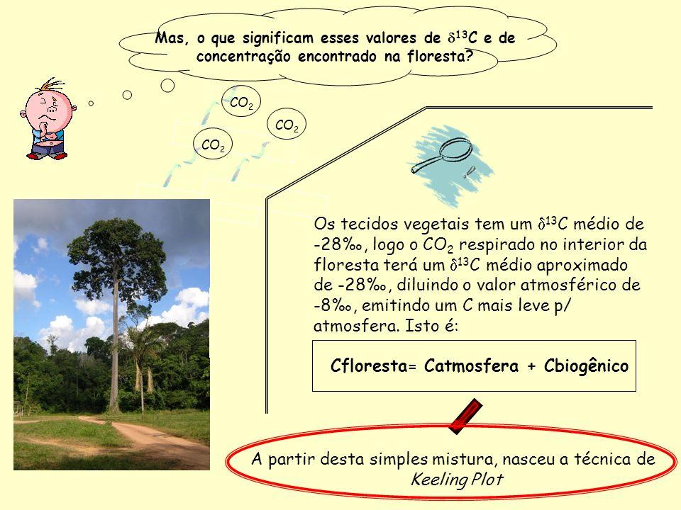 CO 2 Mas, o que significam esses valores de 13 C e de concentração encontrado na floresta? Os tecidos vegetais tem um 13 C médio de -28, logo o CO 2 r