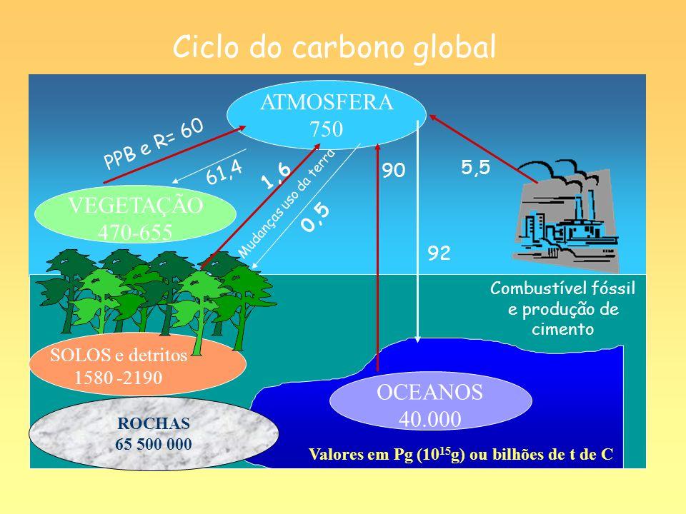 SOLOS e detritos 1580 -2190 VEGETAÇÃO 470-655 OCEANOS 40.000 ROCHAS 65 500 000 ATMOSFERA 750 Valores em Pg (10 15 g) ou bilhões de t de C Ciclo do car