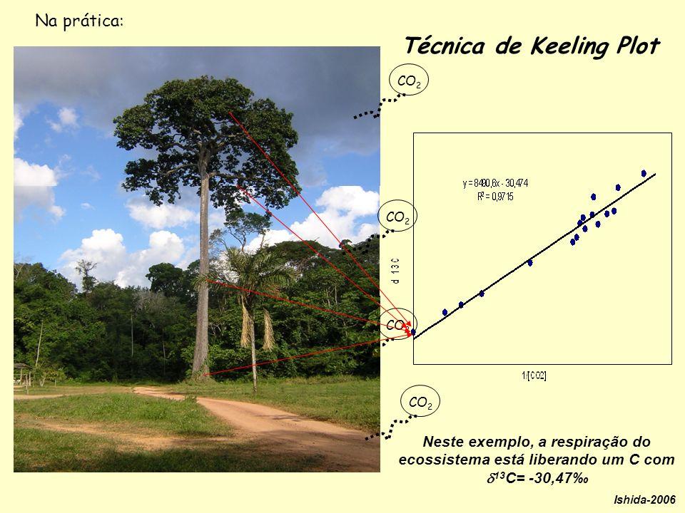 Neste exemplo, a respiração do ecossistema está liberando um C com 13 C= -30,47 Técnica de Keeling Plot Ishida-2006 Na prática: CO 2