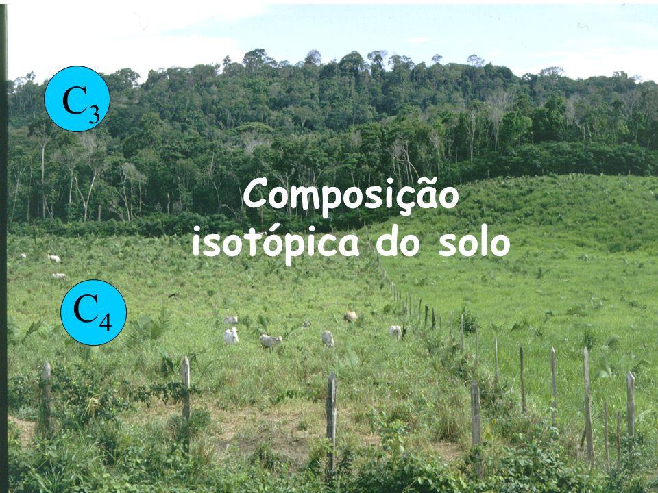 C4C4 C3C3 Composição isotópica do solo