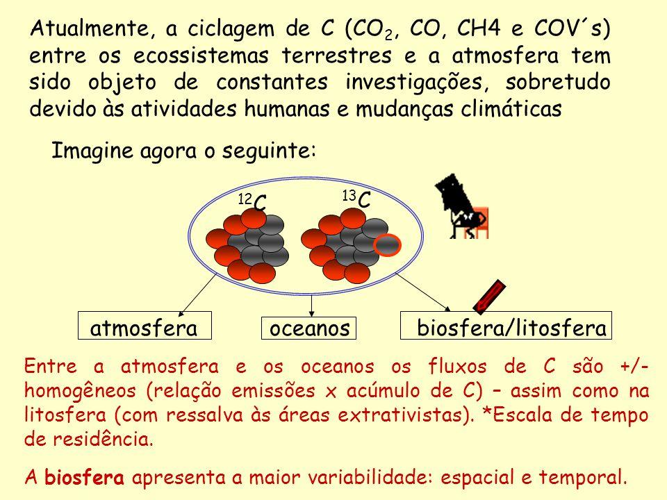 Imagine agora o seguinte: Entre a atmosfera e os oceanos os fluxos de C são +/- homogêneos (relação emissões x acúmulo de C) – assim como na litosfera