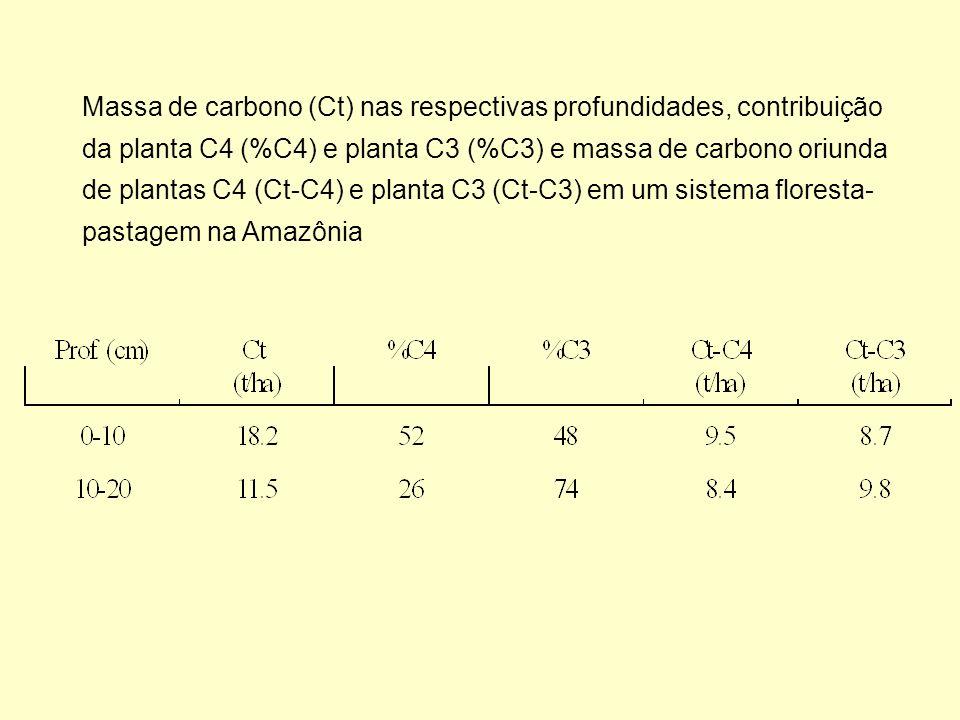 Massa de carbono (Ct) nas respectivas profundidades, contribuição da planta C4 (%C4) e planta C3 (%C3) e massa de carbono oriunda de plantas C4 (Ct-C4
