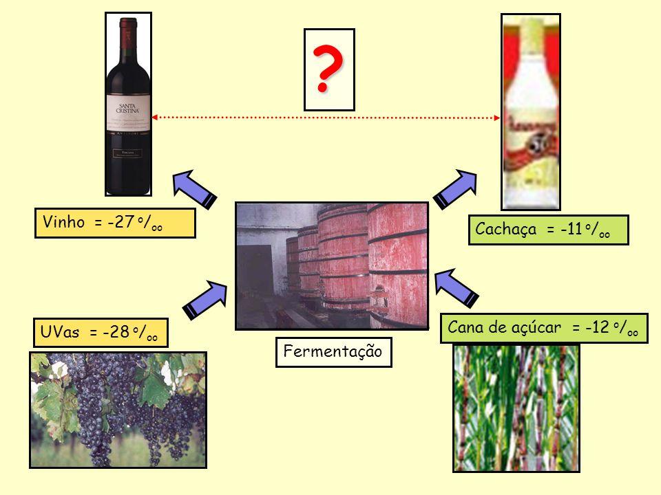 UVas = -28 o / oo Cana de açúcar = -12 o / oo Vinho = -27 o / oo Cachaça = -11 o / oo Fermentação ?