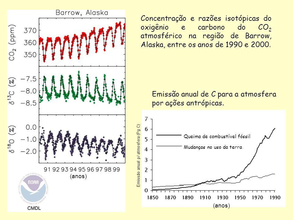 Concentração e razões isotópicas do oxigênio e carbono do CO 2 atmosférico na região de Barrow, Alaska, entre os anos de 1990 e 2000. (anos) Queima de