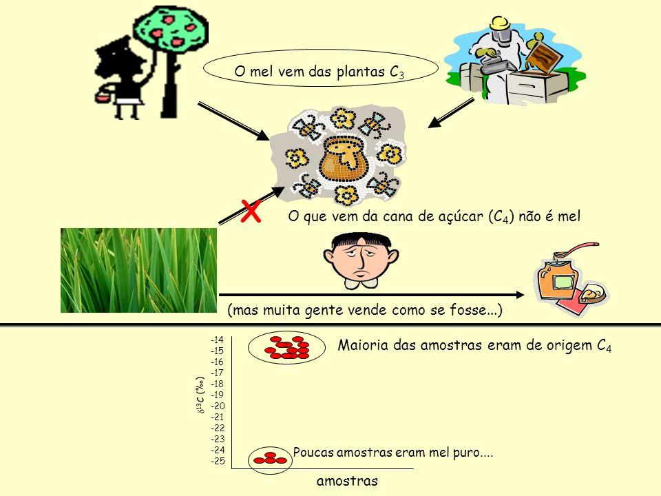O mel vem das plantas C 3 O que vem da cana de açúcar (C 4 ) não é mel X (mas muita gente vende como se fosse...) amostras 13 C () -14 -15 -16 -17 -18