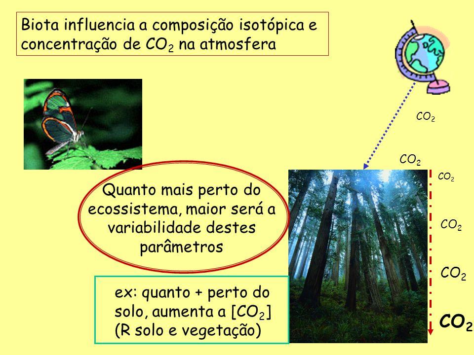 -12 -14 -16 -18 -20 -22 -24 -26 -28 -30 -32 13 C () 0 100 200 300 400 500 600 800 1000 Vegetação C 4 Vegetação C 3 Distância dos transectos (m) gramíneas transição floresta * O solo tende a ter uma composição isotópica similar a cobertura vegetal presente