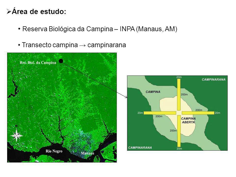 Área de estudo: Reserva Biológica da Campina – INPA (Manaus, AM) Transecto campina campinarana