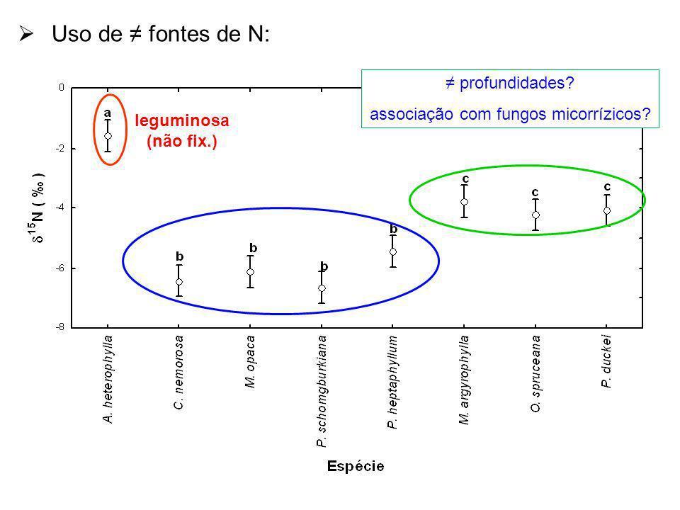 Uso de fontes de N: leguminosa (não fix.) profundidades? associação com fungos micorrízicos?