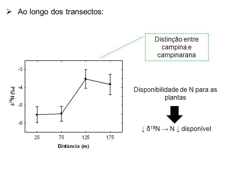 Distinção entre campina e campinarana Ao longo dos transectos: Disponibilidade de N para as plantas δ 15 N N disponível