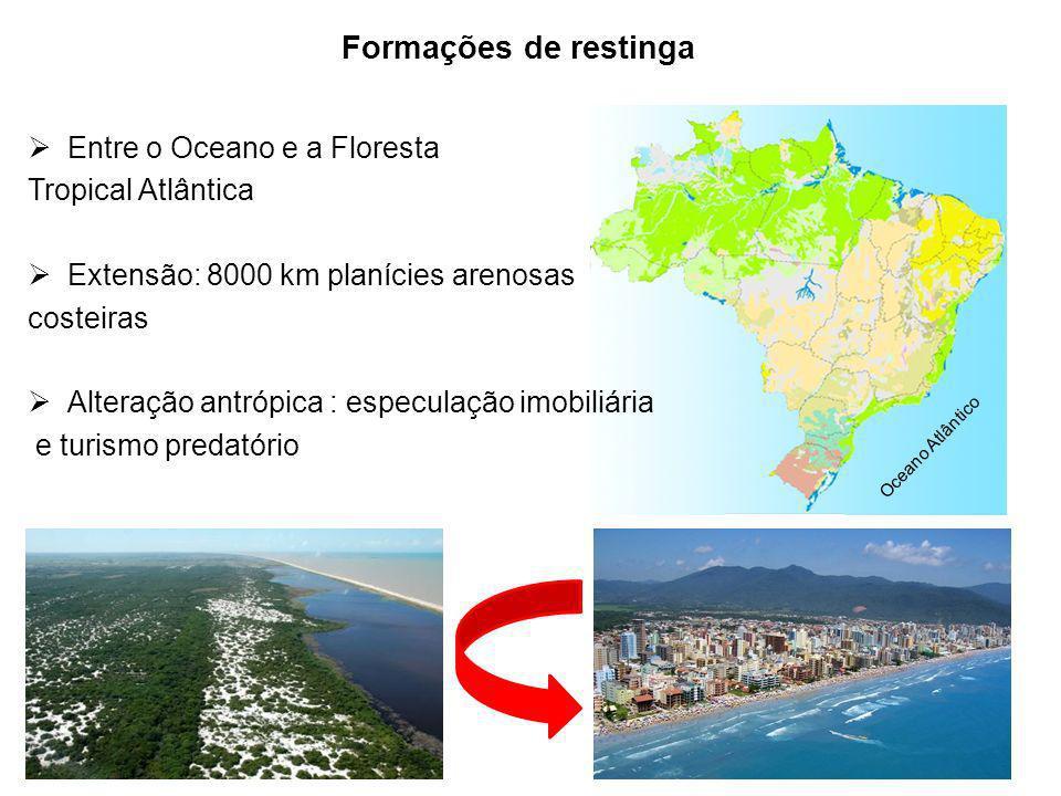 Oceano Atlântico Formações de restinga Apoio: Entre o Oceano e a Floresta Tropical Atlântica Extensão: 8000 km planícies arenosas costeiras Alteração