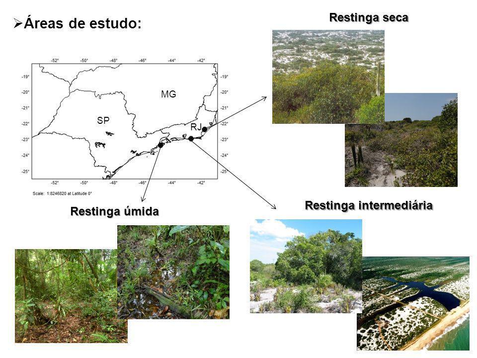 RJ SP MG Áreas de estudo: Restinga seca Restinga úmida Restinga intermediária