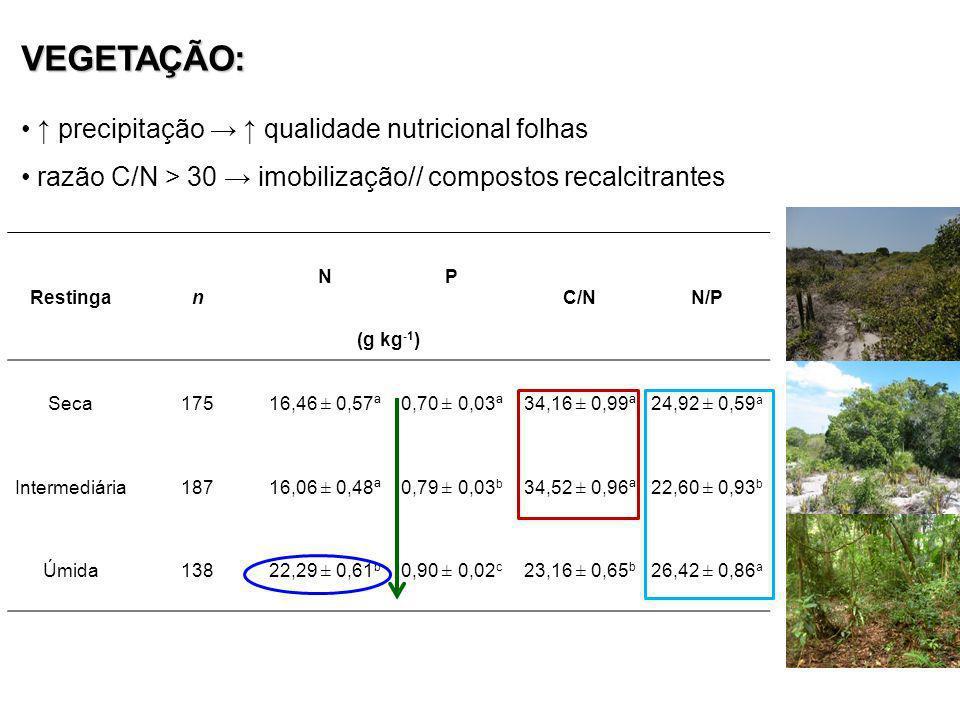 VEGETAÇÃO: precipitação qualidade nutricional folhas razão C/N > 30 imobilização// compostos recalcitrantes Restingan NP C/NN/P (g kg -1 ) Seca175 16,