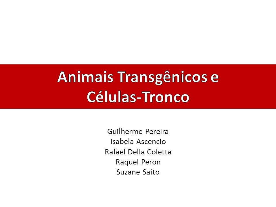 Indústria Indústria farmacêutica: – Utilização de modelos animais (camundongos) no desenvolvimento de novas drogas.