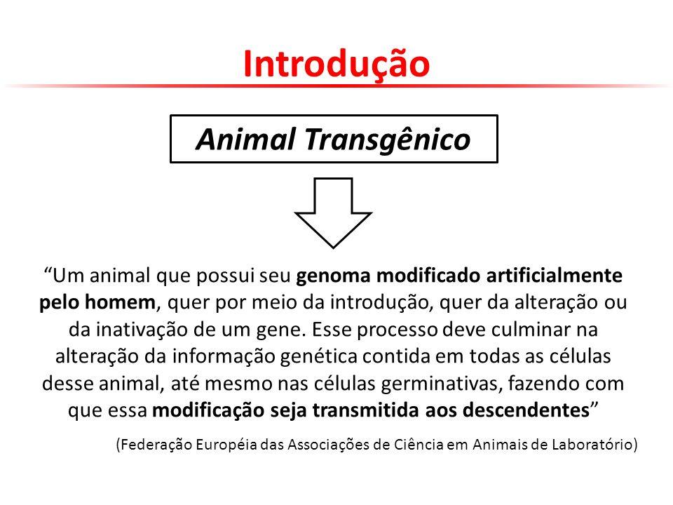 Introdução Um animal que possui seu genoma modificado artificialmente pelo homem, quer por meio da introdução, quer da alteração ou da inativação de u